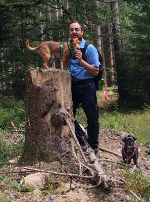 Koki führt seine Hunde vor (Flossi (oben) und Chicca)