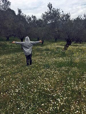 Luise im Olivengarten