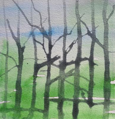 003msp-raster-baeme-aqarell-papier-23x23-2015
