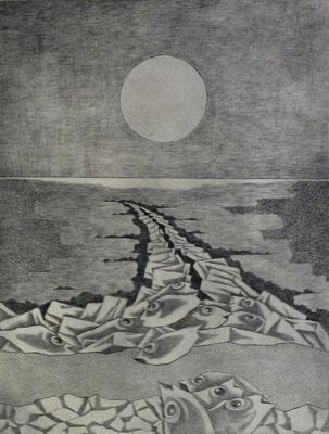 Buhne bei Dagebüll  1977  30 x 39,5 ( Ätz )        ( 1 )