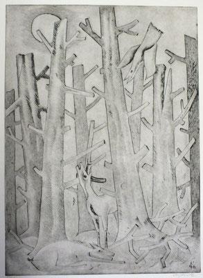 Toter Wald  1996  40 x 55