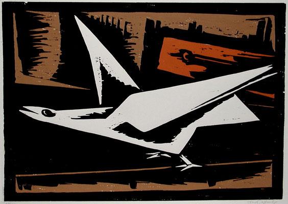 Laufender Vogel  1966  65 x 47          Platte vorhanden