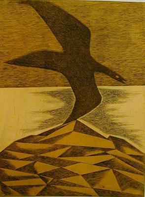 Vogel im Gebirge  1977  29,5 x 39,5 ( Ätz )       ( 4 )