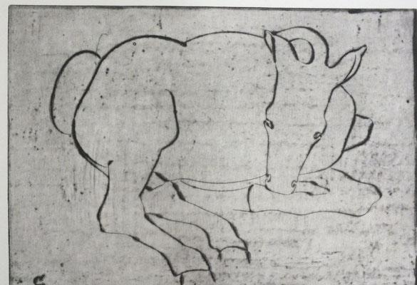Pferd  1981  26,5 x 19