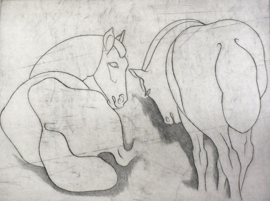Pferde  1981  39,5 x 30          ( 3 )