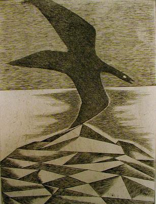 Vogel im Gebirge 1977  29,5 x 39,5 ( Ätz )