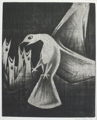 Nest Flug II  1972  30 x 36