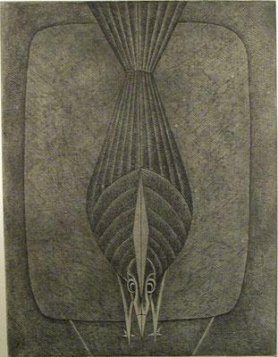 Vogel  1977  30 x 39,5 ( Ätz )         ( 2 )