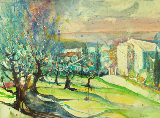 Toskana_Olivenbäume bei Vinci, vormittags_56x76 cm