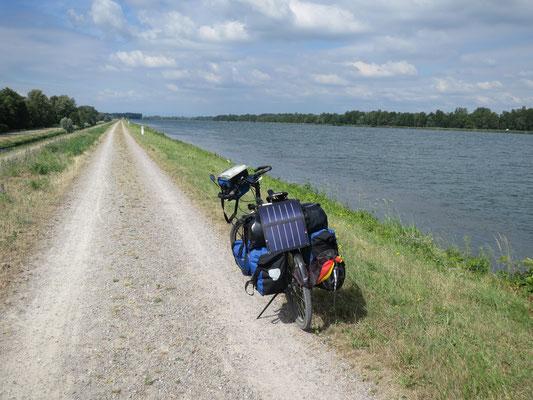 am Rhein kurz vor Kehl