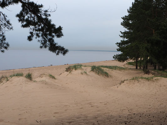 Am finnischen Meerbusen