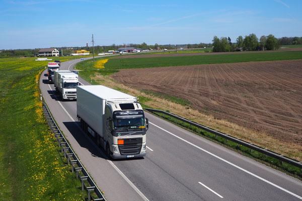 viel Verkehr auf der Via Baltica, wenigstens ein schöner Seitenstreifen