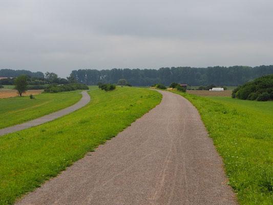 Fahren auf dem Rheindeich bei Köln