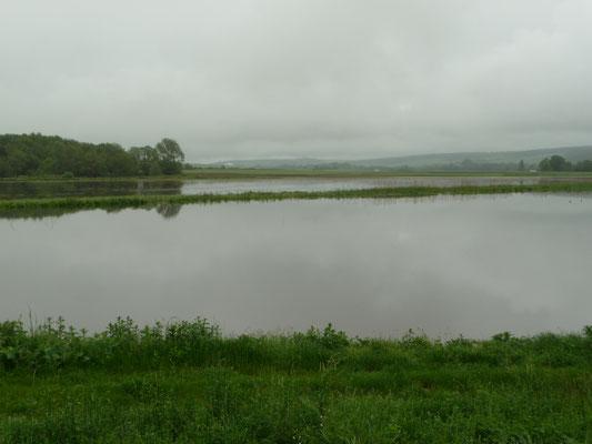 Inondation de la Vanne à Vulaines 2016