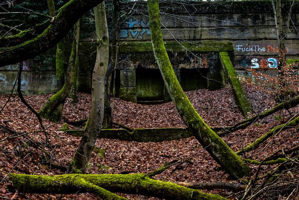 Eine der 3 im Wald versteckten Schießanlagen nahe dem Bolzplatz am Waldrand Tempelsee