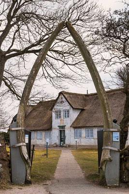 Markanter Toorbogen - Der Eingang zum Heimatmuseum, geformt aus den Kiefernknochen eines Wals, Keitum, Sylt