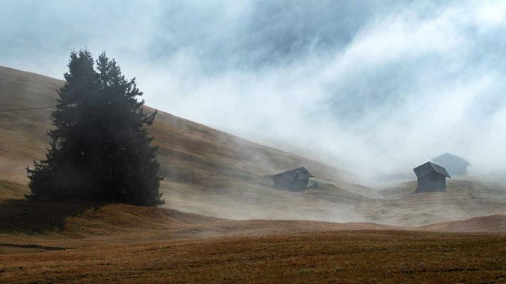 Über den Nebeln - während wir unten gegen eine hartnäckige Nebelwand schauten, lag der Blick auf die Gipfel ca. 150 Meter höher frei - Also ging´s bergauf und hoch über die Nebeldecke