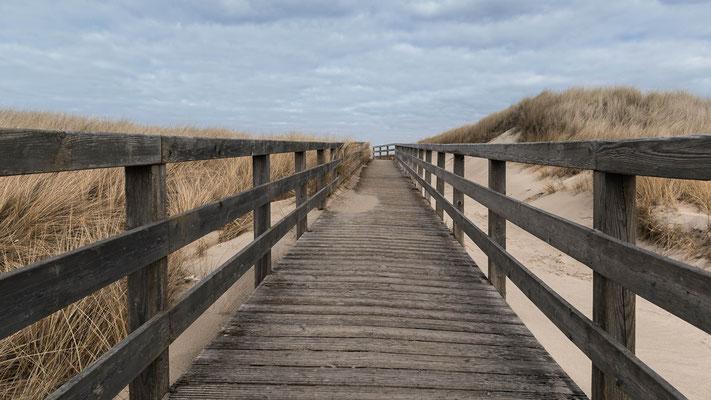 Auf dem Holzweg - auf Sylt eigentlich immer der richtige Weg