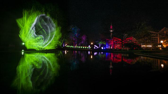 Winterlichter 2018/2019 im Palmengarten Frankfurt/Main - tolle Lichtinstallation, der den Springbrunnen als Projektionsfläche nutzt
