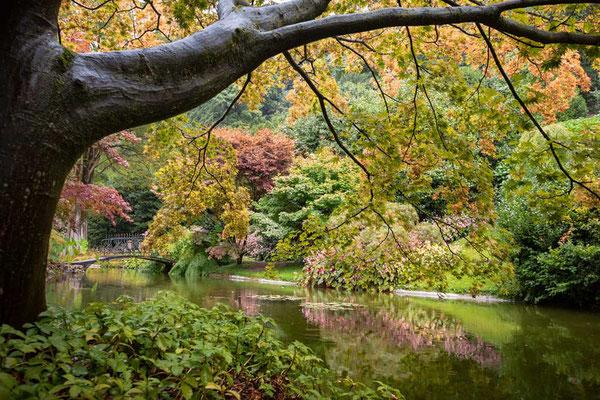 Die botanischen Gärten der Villa Melzi, Bellagio, Comer See, Lombardei, Italien