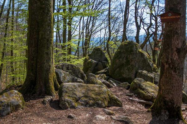 Am Wildweibchenstein, Odenwald, rund um die Burgruine Rodenstein