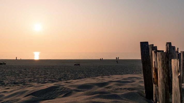 Am Strand von Zandvoort, NL