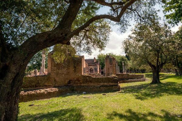 Villa Adriana, mehr als 2100 Jahre alt - da komme ich mir an meinem Geburtstag als wir die Villa besuchen, gleich gar nicht mehr so alt vor :-)