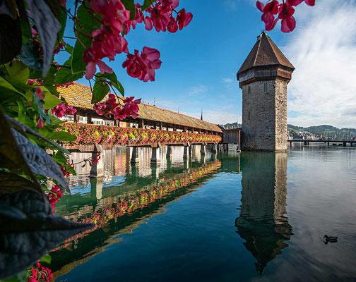 Das Postkartenmotiv von Luzern - die Kapellbrücke, erbaut ca. 1365 als Wehrgang, abgebrannt im Jahr 1993 und schnell wieder aufgebaut, sodass man sie seit 1994 wieder begehen kann, Luzern, CH