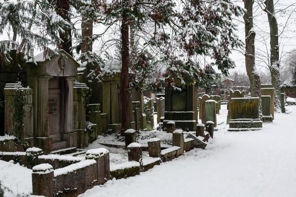 Alter Friedhof Offenbach/Main
