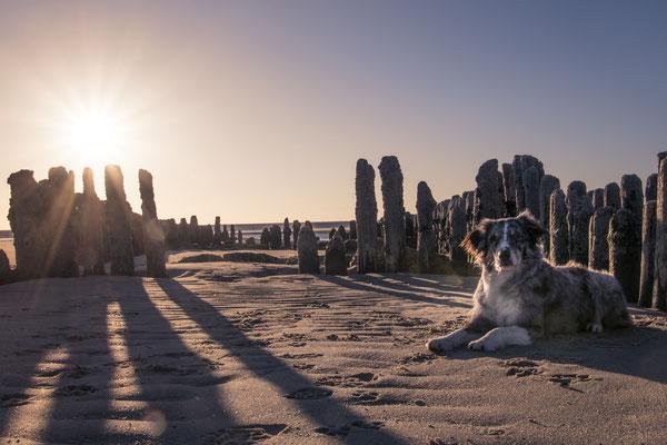 Am Strand von Rantum, Sylt