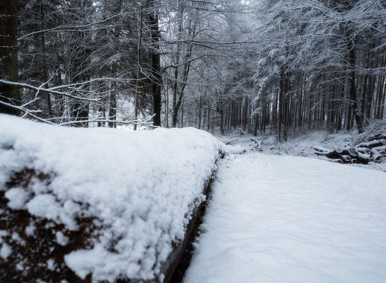 Die winterlich verschneiten Spessart Wälder rund ums Schloß Mespelbrunn