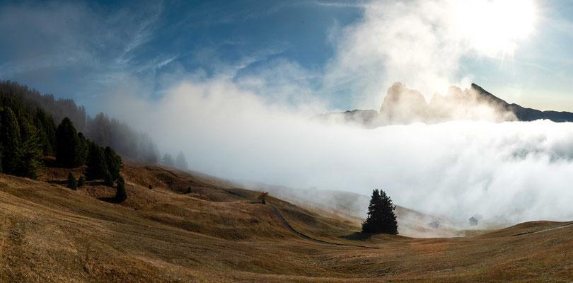 Der Nebel gewinnt aber auch in den höheren Lagen schnell wieder die Oberhand und verdeckt den Blick auf die Berge und die Sonne