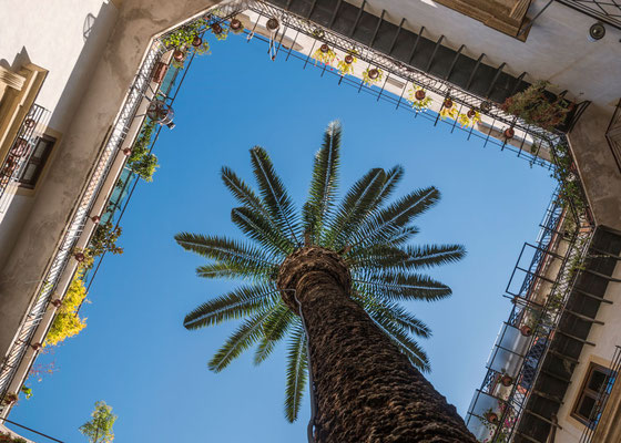 Manchmal lohnt der Blick in einen der vielen Hinterhöfe von Palermo, Sizilien