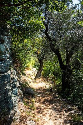 Zu den Marmite dei Giganti bei Torbole, nördlicher Gardasee, Italien
