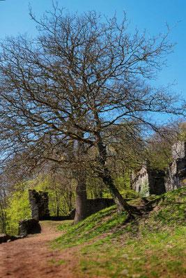 Burgruine Rodenstein, Odenwald