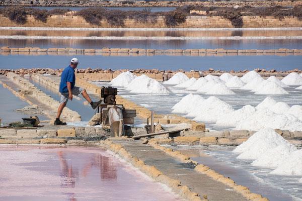 Knochenjob - Die Salzgewinnung ist heute noch mit viel Handarbeit verbudnen - Salinen von Marsala, Region Trapani, Sizilien