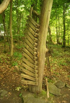Waldinstrumente