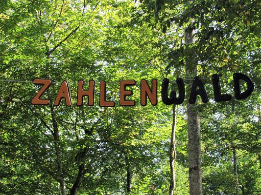 Am Eingang vom Zahlenwald im Gramschatzer Wald