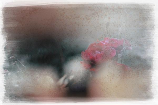 FleursAntiques 01