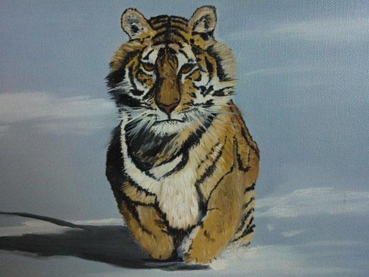 Tiger 30x40