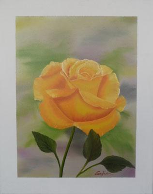 gelbe Rose 40x50