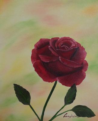 rote Rose 24x30
