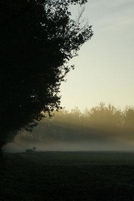 Sologne - paysage photo nature en Sologne ©Alexandre Roubalay - Acadiau d'images