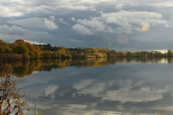 Automne sur l'étang - paysage photo nature en Sologne ©Alexandre Roubalay - Acadiau d'images