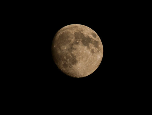 Lune - paysage photo nature en Sologne ©Alexandre Roubalay - Acadiau d'images