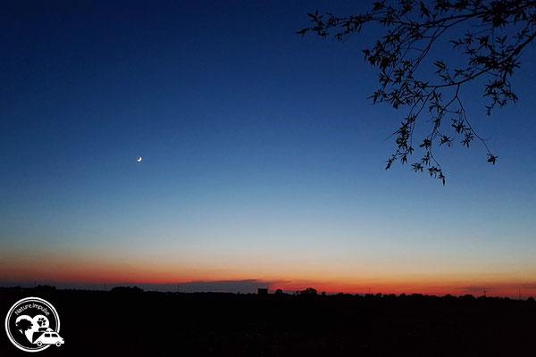 Nature.Impulse - Urlaub gegen Hand auf dem Hof in Sachsen Anhalt - Sonnenuntergang