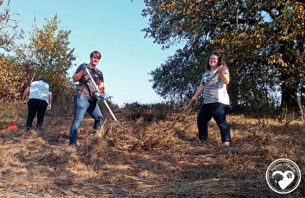 Nature.Impulse - Paws4eveR im Einsatz für Vielfalt in der Geocaching CITO Woche