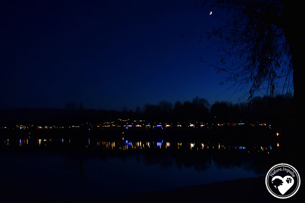 Nature.Impulse - Lichter am See