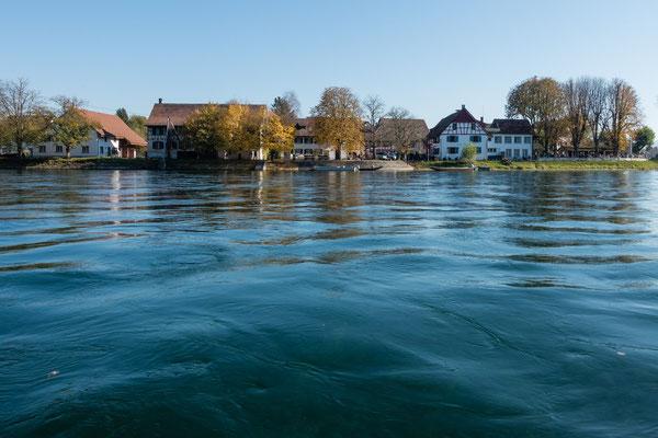 Oberrhein (Blick auf die Schweiz)