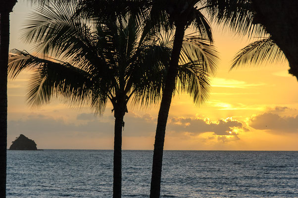 Strand bei Palm Cove